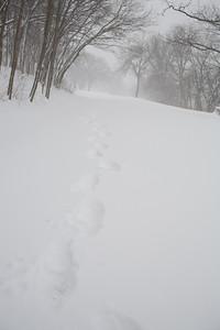 Blizzard08_-25
