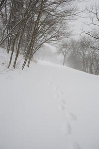 Blizzard08_-26