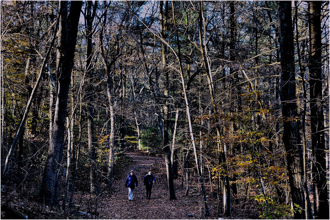 Dark Hollow Trail. November 11, 2017.