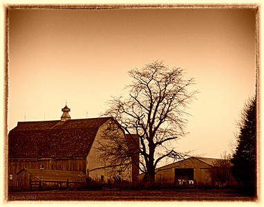Just Another Barn