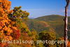 Autumn Colors in a Mountain Vista