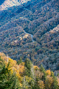 Looking south from the Newfound Gap parking lot, Great Smokey Mountain National Park.