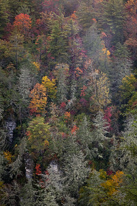 Linville Gorge Autumn Abstract ~ Blue Ridge Parkway ~ October 2009