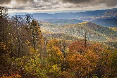 Blue Ridge Autumn