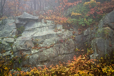 Autumn on the Rocks ~ Blue Ridge Parkway ~ October 2007