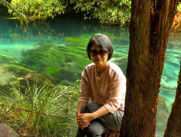 Blue Spring - Te Waihou
