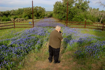 Dave Billingsley searches for the perfect composition. This was our first Bluebonnet stop.
