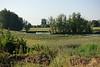 Wiel langs de Waaldijk