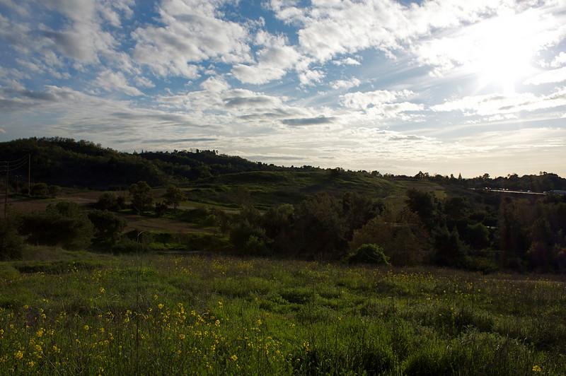 Frank G. Bonelli Park, San Dimas, CA, 2-23-09.