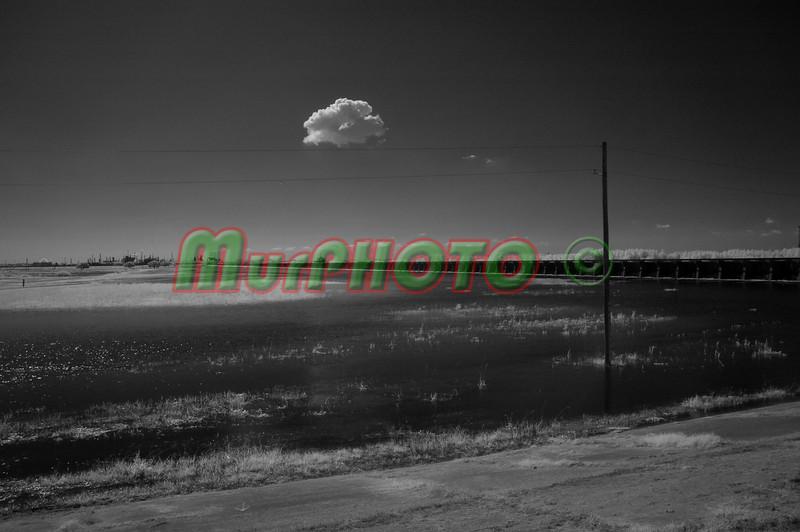 DSC_2413