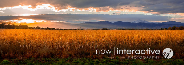 Sunset over the front range and corn field, Niwot Colorado