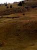 foothills74