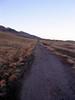 foothills81