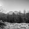 11  G MSH and Hummocks Trail BW
