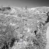 51  G Trail View BW