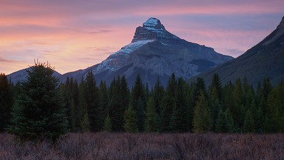 Pilot Mountain from Moose Meadows in August