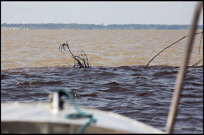 """Meeting of the Waters"": Solimões River and Rio Negro"