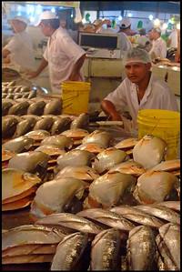 Manaus Municipal Market