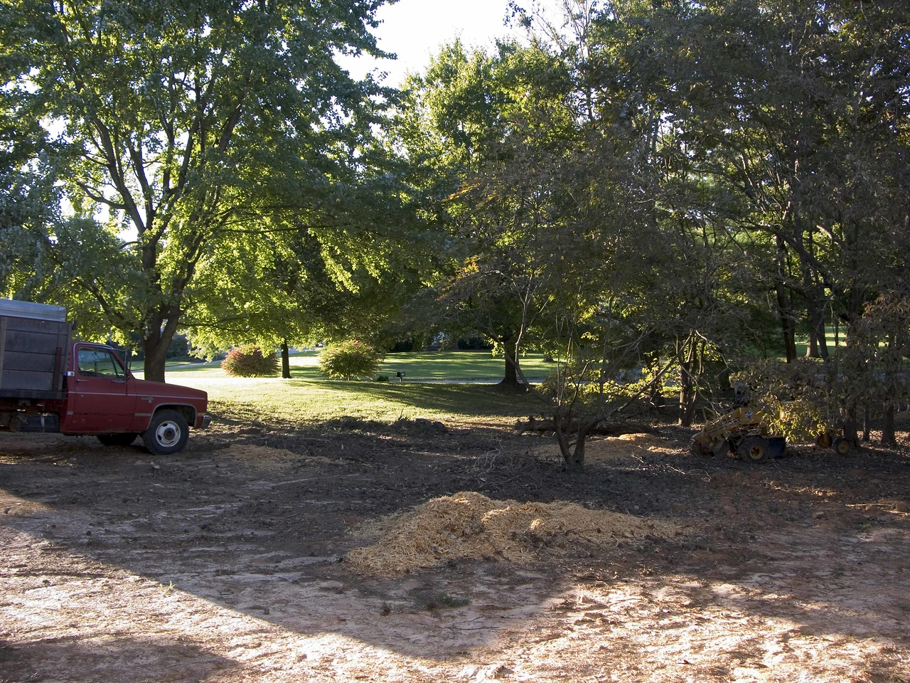 September 20 2004 tree removal in process