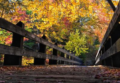 Bridge v3