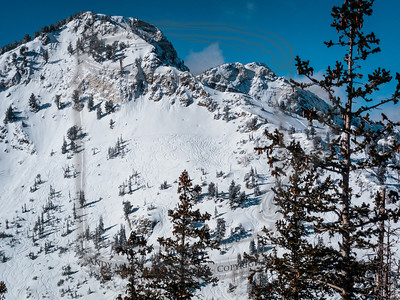 Backcountry accessible from Solitude
