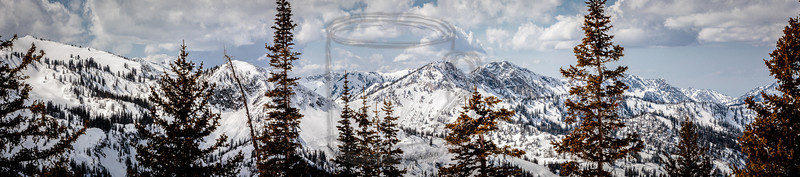 A four-shot handheld pano of the top of Big Cottonwood canyon on 21Apr13, the day that Brighton closed for the season. I shot this after hiking up the cat track that runs down from GW to Snake. Fine day. The snow is deep, but it's a bit saturated..