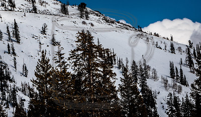 If you look closely you can see the tracks left by (mostly) Ethan on the double-black runs below the cat track to GW from Snake.