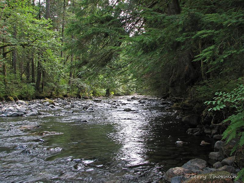 Little Qualicum River, B.C.
