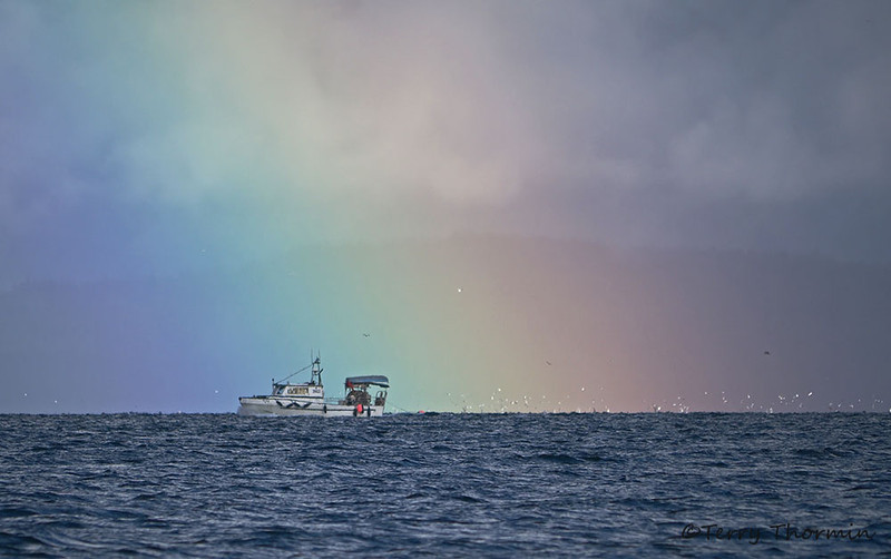 Fishing for the pot of gold