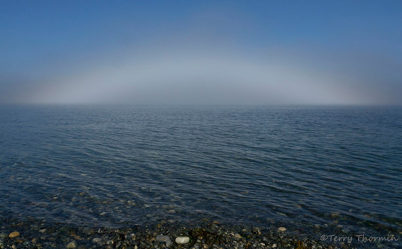 Fogbow over Georgia Strait