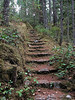 Stone Steps, Little Qualicum Falls Park, B.C.