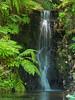 Waterfalls near Cultis Lake