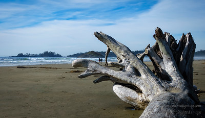 Wickaninnish Beach, Pacific Rim National Reserve,