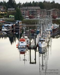 Ucluelet Harbour,