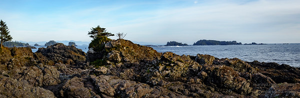 Amphitrite Point ,Wild Pacific Trail