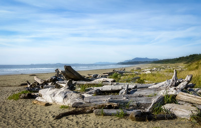 Wickaninnish Beach, Pacific Rim National Park Reserve