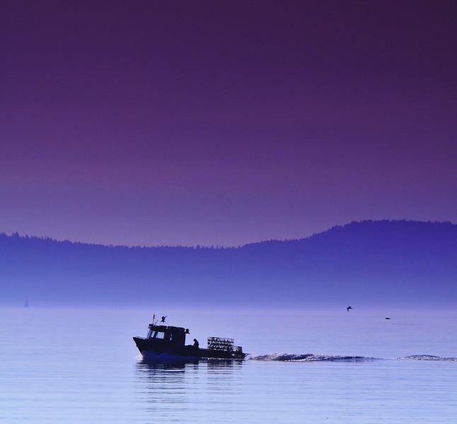 Sidney<br /> Vancouver Island