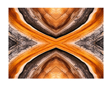 Bristlecone Abstract 8393