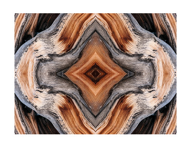Bristlecone Abstract 3713
