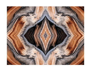 Bristlecone Abstract 3712