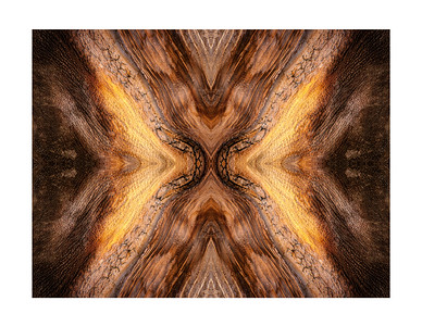 Brtistlecone Abstracts