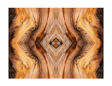 Bristlecone Abstract 7851