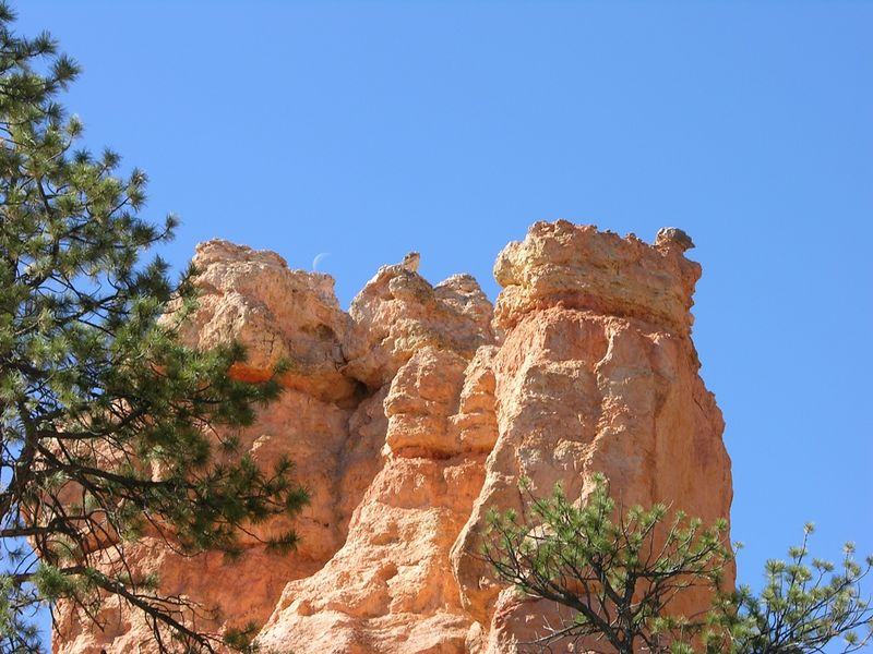 View from Navajo trail