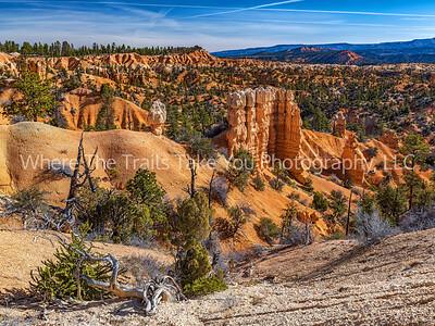 100.  Fairyland Canyon Scenery
