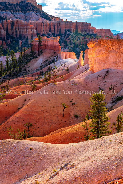 130.  Bryce Canyon Scenery Along The Fairyland Loop Trail
