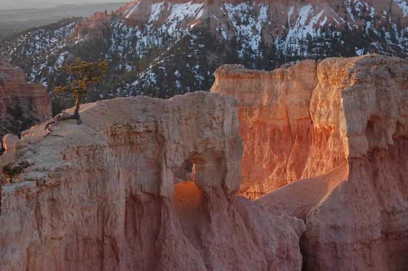 Utah-1307