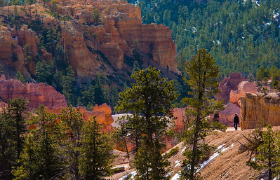 The trails are significantly down hill from the rim parking lots and dip about 500 to 600 feet below the rim. This climb back up is something to keep in mind when hiking .