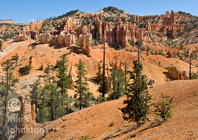 The Fairyland Loop Trail is a 12.9 km [8.0 mile] hiking trail that descends 704 m [2309 ft] from the Paunsaugunt Plateau in south-central Utah.  The area encompassed by the trail lies within Bryce Canyon National Park.