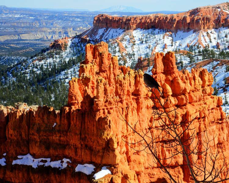 Bryce Canyon National Park (24 of 54)