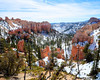 Bryce Canyon National Park (10 of 54)
